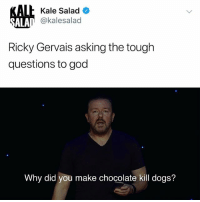 Dogs, God, and Memes: lh Kale Salad O  @kalesalad  ALA  Ricky Gervais asking the tough  questions to god  Why did you make chocolate kill dogs? WHY CANT GOOD BOYS JUST HAVE A LITTLE CHOCOLATE? Watch @rickygervais tonight exclusively on @netflix!