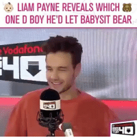 This made my day: LIAM PAYNE REVEALS WHICH  ONE D BOY HE'D LET BABYSIT BEAR  Vodafon  BIG This made my day