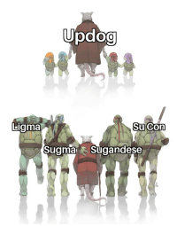 Memes, Http, and Turtle: Liama  SuCon  SugmaSugandese Turtle and Splinter memes on the rise. A solid invest. Buy now! via /r/MemeEconomy http://bit.ly/2Rn6UmA
