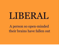Brains, Memes, and 🤖: LIBERAL  A person so open-minded  their brains have fallen out Ha!
