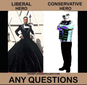 QUESTIONS, LIBERALS?!: LIBERAL  HERO  CONSERVATIVE  HERO  SNOWFLAKEREPELLENT.COM  ANY QUESTIONS QUESTIONS, LIBERALS?!