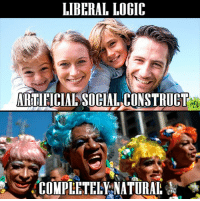 This shift in values is a real disaster.: LIBERAL LOGIC  ARTIHCIAL SOCIAL CONSTRUCT  COMPLEETELYANATURAL This shift in values is a real disaster.