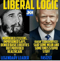 Yet another example of the left's hypocrisy.: LIBERAL LOGIC  JMM  MINDEREDDITIZENS  IMPRISONED GAYS,  (HASN'T TAKEN OFFICE)  DENIEDBASIC LIBERTIES SAIDSOME MEAN AND  SOMETIMESSTUPID  BUT PROVIDED  STUFF  HEALTHCARE  LEGENDARY LEADER  FASCIST Yet another example of the left's hypocrisy.