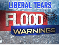 A biblical flood began all over my Facebook last night...we're gonna need a bigger boat ;) #elections2016: LIBERAL TEARS  EMBRACE THE  WVARNINGS A biblical flood began all over my Facebook last night...we're gonna need a bigger boat ;) #elections2016