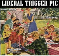 Dating, Memes, and Parents: LIBERAL TRIGGER PIC  Parents Married  White Babyl  Meat  Not  Transgendered  Dating Member  of Same Race ----------------- Proud Partners 🗽🇺🇸: ★ @conservative.american 🇺🇸 ★ @raised_right_ 🇺🇸 ★ @conservativemovement 🇺🇸 ★ @millennial_republicans🇺🇸 ★ @keepamerica.us 🇺🇸 ★ @the.conservative.patriot 🇺🇸 ★ @conservative.female 🇺🇸 ★ @brunetteandpolitical 🇺🇸 ★ @emmarcapps 🇺🇸 ----------------- bluelivesmatter backtheblue whitehouse politics lawandorder conservative patriot republican goverment capitalism usa ronaldreagan trump merica presidenttrump makeamericagreatagain trumptrain trumppence2016 americafirst immigration maga army navy marines airforce coastguard military armedforces ----------------- The Conservative Nation does not own any of the pictures or memes posted. We try our best to give credit to the picture's rightful owner.