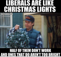 Christmas, Memes, and Work: LIBERALS ARE LIKE  CHRISTMAS LIGHTS  CKEEPAMERICA USA  HALF OF THEM DON'T WORK  AND ONES THAT DO AREN'T TOO BRIGHT I would trust a Christmas light before a liberals.😂