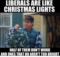 Christmas, Memes, and Work: LIBERALS ARE LIKE  CHRISTMAS LIGHTS  CKEEPAMERICA USA  HALF OF THEM DON'T WORK  AND ONES THAT DO AREN'T TOO BRIGHT Still one of my favs