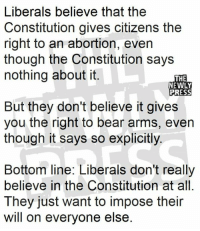 Memes, Abortion, and Bear: Liberals believe that the  Constitution gives citizens the  right to an abortion, even  though the Constitution says  nothing about it.  THE  NEWLY  But they don't believe it gives  you the right to bear arms, even  though it says so explicitly.  Bottom line: Liberals don't really  believe in the Constitution at all  They just want to impose their  will on everyone else Nails it!