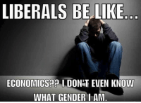 ~ Ginger  Rowdy Conservatives: LIBERALS BELIKE  ECONOMICS DONT EVEN KNOW  WHAT GENDER I AM ~ Ginger  Rowdy Conservatives