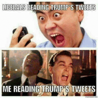 LMAO... TRUE DAT! 😆🤣😂 ➡️ ➡️ Kevin Roberts III%: LIBERALS  READING TRUMP'S TWEETS  ME READING TRUMP'S TWEETS LMAO... TRUE DAT! 😆🤣😂 ➡️ ➡️ Kevin Roberts III%