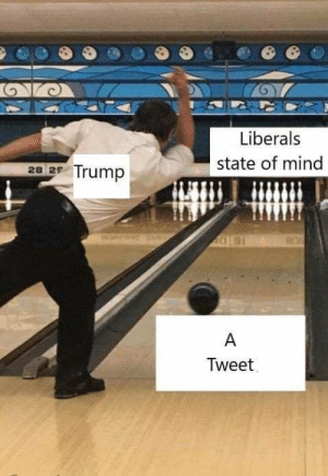 Twitter, Trump, and Mind: Liberals  state of mind  22 Trump  Tweet GEOTUS on Twitter ( 2019, colorized)