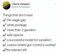 Memes, Socialism, and White: Liberty Hangout  @LibertyHangout  Things that don't exist  the wage gap  V white privilege  more than 2 genders  safe spaces  a successful model for socialism  V a place where gun control's worked  the tolerant left (GC)