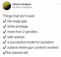 Memes, Socialism, and White: Liberty Hangout  @LibertyHangout  Things that don't exist  the wage gap  white privilege  V more than 2 genders  V safe spaces  a successful model for socialism  a place where gun control's worked  the tolerant left (GC)