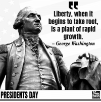 Happy Presidents Day!: Liberty, when it  begins to take root,  is a plant of rapid  growth.  George Washington  PRESIDENTS DAY  FOX  EWS Happy Presidents Day!