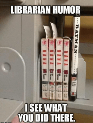 "Being Alone, Batman, and Books: LIBRARIAN HUMOR  ISEE WHAT  YOU DID THERE  0 cosmic-noir:  jefflaclede:  lurknaw:  bejeweledaqua:  dracophile:  randomthingieshere:  pheenixwright:  invenblocker:  pheenixwright:  invenblocker:  pheenixwright:  invenblocker:  forthefuns:  follow forthefuns for more funny stuff   Your honor! Please direct your attention towards the manga. As you can see there are small pieces of paper sticking out of every volume. But no such paper is sticking out of the Batman comic. The reason? The Batman book doesn't belong to the library. The photographer put it there to take a picture.   Once again making hasty assumptions, Wright? First of all, I'd like to direct the court's attention to this particular spot, in the top right-hand corner. Notice how the words are blocking the top of the Batman book. With this in mind, how can you claim that there is ""no such paper sticking out of the Batman comic""?!   Say whaaaat? Well uhm Look at the size of the paper pieces, they're all sticking pretty far out. If there was paper in the batman comic, it would be big enough to stick up over the text. And while gravity does exist, it probably won't make the paper do a 90 degree turn and just lean horisontally left at the middle.    Still grasping for straws, Wright? Hypothetically, if there were a paper there, this picture would not be able to prove its presence. I've taken the liberty of drawing a diagram to illustrate my point. We are faced with three possibilities. It is possible that (1) the paper was simply tucked in deeper than the others. Paper is a soft material, Wright. It's not unreasonable for it to do a (2) 90 degree turn.  Or perhaps, (3) a paper does not exist there at all.  Either way, you cannot prove your client innocent without sufficient evidence.     Which, of course, is impossible thanks to the obtrusive words.     I'm sorry Edgeworth. I concede that I can't disprove theory 1 But the image you submited for theory 2 is contradictory. Look at the tilt of the other papers. They clearly prove how much the paper would tilt. And theory 3 is my point! Why would the library's book not have this piece of paper when the other library books do? While you still have thory 1, there is another contradiction. The books are not in alphabetical order, this proves that the batman comic was placed there specifically for the picture!   Ack. (Perhaps I should've left the artistry to the forensic artist…) Now hold it right there! It doesn't matter which direction the paper is going because it's impossible to prove it even exists! Those theories are all the same! We do not have enough information to prove them. There could be an infinite amount of papers in there for all we know. I simply presented them only so that the court could better understand your baseless conjecture! … I suppose the order of the books do seem out of the ordinary. However, therein lies not just one possibility. Clearly, those are Japanese graphic novels, also known as ""manga"". And the Batman comic book is a graphic novel, too, no? Seeing as it currently has only graphic novels in the shelf, it is possible that any other novels have simply not yet been restocked. Asserting whether or not this effect was deliberate is useless– there is no way of knowing if the photographer and the captioner are the same person, let alone their involvement in this picture. Face it Wright, you can't prove any of these groundless accusations!  Did everyone just ignore the library sticker?    D E AD  This is yet the best post ever  oh my god  Amazing lol"