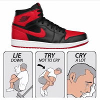 It's aight guys the sneaker game ain't for everyone 😂😂😂💀💀💀: LIE  DOWN  TRY  NOT TO CRY  CRY  A LOT It's aight guys the sneaker game ain't for everyone 😂😂😂💀💀💀