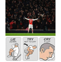 Rosicky will leave this summer 😔 Tag Arsenal fans 👇 fuetbol football mufc mcfc CFC LFC Zlatan PSG Messi ligue1 bundesliga laliga BPL Cristiano realmadrid Bayern Dortmund inter Milan Juventus futbolsport igersfcb neymar suarez garethbale visubal Ibrahimovic: LIE  DOWN  TRY  NOT TO CRY  CRY  A LOT Rosicky will leave this summer 😔 Tag Arsenal fans 👇 fuetbol football mufc mcfc CFC LFC Zlatan PSG Messi ligue1 bundesliga laliga BPL Cristiano realmadrid Bayern Dortmund inter Milan Juventus futbolsport igersfcb neymar suarez garethbale visubal Ibrahimovic