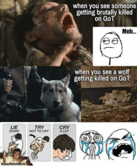 ~Cersei: LIE  DOWN  TRY  NOT TO CRY  when you see someone  getting brutally killed  on Go  Meh...  when you see a wolf  getting killed on GoT  CRY  A LOT ~Cersei