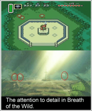 The attention to detail in Breath of the Wild.: LIFE  0o  The attention to detail in Breatlh  of the Wild The attention to detail in Breath of the Wild.