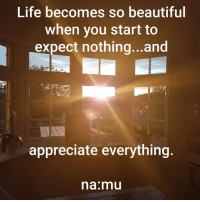 Beautiful, Life, and Memes: Life becomes so beautiful  when you start to  expect nothing... and  appreciate everything  na mu <3 na:mu