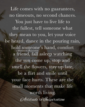 Fall, Life, and Memes: Life comes with no guarantees,  no timeouts, no second chances.  You just have to live life to  the fullest, tell someone what  they mean to you, let your voice  be heard, dance in the pouring rain,  hold someone's hand, comfort  a friend, fall asleep watching  the sun come up, stop and  smell the flowers, stay up late,  be a flirt and smile until  your face hurts. These are the  small moments that make life  worth living.  Atude to Frsperation  itude to udpiration <3 Life comes with no guarantees ...