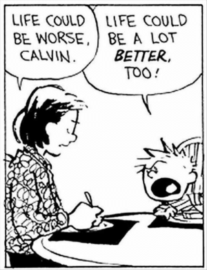 Dank, Life, and Memes: LIFE COULD LIFE COULD  BE WORSE, BE A LOT  CALVIN  BETTER  TOO meirl by mymorningjacket MORE MEMES