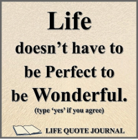 Life Doesnt Have To Be Perfect To Be Wonderful Type Yes If You