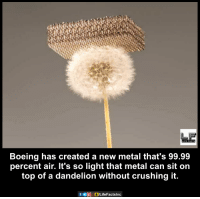 boe: LIFE FACTS  Boeing has created a new metal that's 99.99  percent air. It's so light that metal can sit on  top of a dandelion without crushing it.