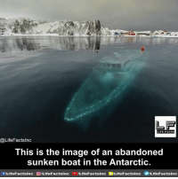 Facts, Life, and Memes: LIFE FACTS  @LifeFactsInc  This is the image of an abandoned  sunken boat in the Antarctic  sinc acts ILifeFactslnc  sinc f/Life FactsInc sinc ILifeF