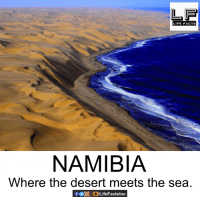 Facts, Life, and Memes: LIFE FACTS  NAMIBIA  Where the desert meets the sea