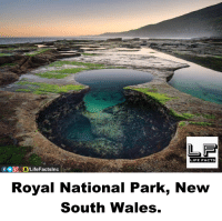 Facts, Life, and Memes: LIFE FACTS  Royal National Park, New  South Wales.