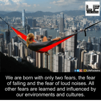 loud noises: LIFE FACTS  We are born with only two fears, the fear  of falling and the fear of loud noises. All  other fears are learned and influenced by  our environments and cultures.