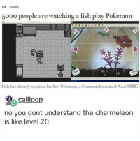 Charmander, Life, and Memes: Life  Gaming  5000 people are watching a fish play Pokemon  Fish has already acquired his first Pokemon, a Charmander named AAAABBK.  Calli pop  no you dont understand the charmeleon  is like level 20