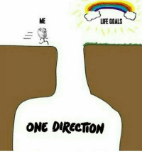 Goals, Life, and Memes: LIFE GOALS  ONE DIRECTION I fell in that deep hole
