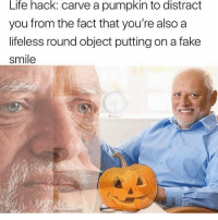 Fake, Life, and Memes: Life hack: carve a pumpkin to distract  you from the fact that you're also a  lifeless round object putting on a fake  smile tag a s@d boi
