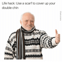 Funny, Life, and Life Hack: Life hack: Use a scarf to cover up your  double chin I should honestly be charging for this kind of information