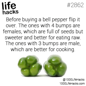 bell pepper: life  hacks  Before buying a bell pepper flip it  over. The ones with 4 bumps are  females, which are full of seeds but  sweeter and better for eating raw.  The ones with 3 bumps are male,  which are better for cooking  #2862  @1000LifeHacks  1000LifeHacks.com