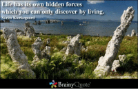 kierkegaard: Life has its  own hidden forces  which you can only discover by living.  Soren Kierkegaard  Brainy  Quote