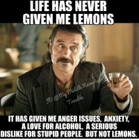 serious: LIFE HAS NEVER  GIVEN ME LEMONS  IT HAS GIVEN MEANGERISSUES, ANXIETY.  A LOVE FOR ALCOHOL, A SERIOUS  DISLIKE FOR STUPID PEOPLE. BUT NOT LEMONS.