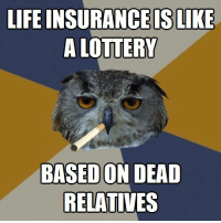 """Life, Lottery, and Tumblr: LIFE INSURANCEISLIKE  A LOTTERY  BASED ON DEAD  RELATIVES <p><a href=""""http://life-insurancequote.tumblr.com/post/150375399760/listen-to-harold-the-hooter-and-get-life-insurance"""" class=""""tumblr_blog"""">life-insurancequote</a>:</p><blockquote><p>Listen to Harold the Hooter and get life insurance for some reason. <a href=""""http://YourLifeSolution.com"""">http://YourLifeSolution.com</a><br/></p></blockquote>"""