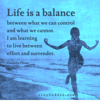 <3 Tiny Buddha: Life is a balance  between what we can control  and what we cannot.  I am learning  to live between  effort and surrender.  Danielle Orner  tiny buddha c o m <3 Tiny Buddha