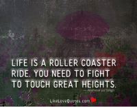 Life Is A Roller Coaster Ride You Need To Fight To Touch Great