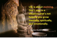 Memes, Evolve, and 🤖: Life is about evolving.  Don't stay in a  situation that's not  helping you grow  mentally, spiritually,  and emotionally.  e-buddh  Om