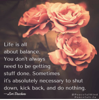 Live your life with little pauses throughout the day. Use the time between activities to stop, take a few breaths, begin again.  Michelle Maros Barb Schmidt: Life is all  about balance.  You don't always  need to be getting  stuff done. Sometimes  it's absolutely necessary to shut  down, kick back, and do nothing  Lori Deschene  P e a c e f u l M i n d  P e a c e f u I Life Live your life with little pauses throughout the day. Use the time between activities to stop, take a few breaths, begin again.  Michelle Maros Barb Schmidt