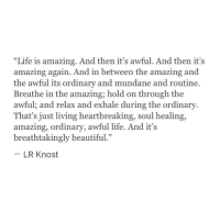 "Amazing: ""Life is amazing. And then it's awful. And then it's  amazing again. And in between the amazing and  the awful its ordinary and mundane and routine.  Breathe in the amazing; hold on through the  awful; and relax and exhale during the ordinary  That's just living heartbreaking, soul healing,  amazing, ordinary, awful life. And it's  breathtakingly beautiful.""  LR Knost"