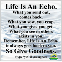 Memes, 🤖, and Echo: Life Is An Echo.  What you send out,  comes back.  What you sow, you reap.  What you give, you get  What you see in others  exists in you  Remember, Life Is An Echo,  it always gets back to you.  So Give Goodness  (type yes if you agree) Understanding Compassion