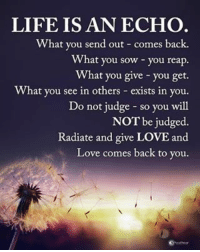 Life, Love, and Memes: LIFE IS AN ECHO  What you send out comes back.  What you sow you reap.  What you give you get.  What you see in others exists in you.  Do not judge so you will  NOT be judged.  Radiate and give LOVE and  Love comes back to you. LIFE IS AN ECHO. What you send out - comes back. What you sow - you reap. What you give - you get. What you see in others - exists in you. Do not judge - so you will NOT be judged. Radiate and give LOVE and Love comes back to you. powerofpositivity