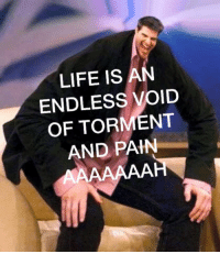 Pain Meme: LIFE IS AN  ENDLESS VOID  OF TORMENT  AND PAIN