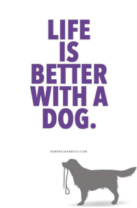 Life, Memes, and True: LIFE  IS  BETTER  WITH A  DOG  HENDRICKANDCO.COM Yess... this is So true!!!  Life is better with a DOG!   >> Get this message on a tee https://hendrickboards.com/square-it