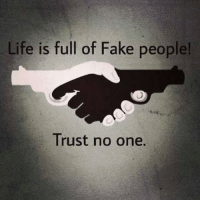 fake: Life is full of Fake people!  Trust no one.